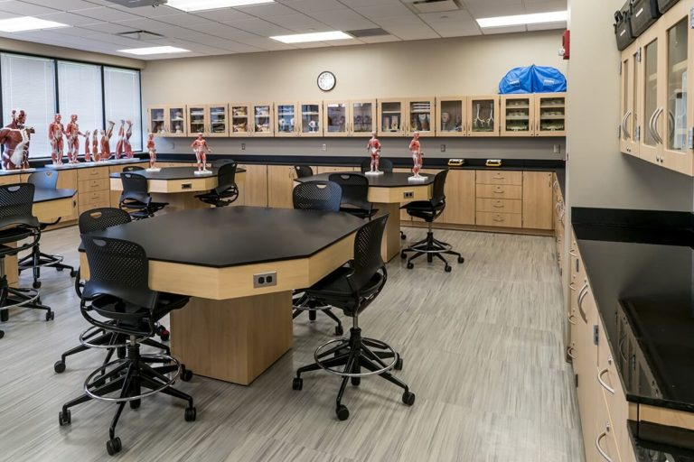 Labs in Education - Casework Labs